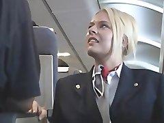 Ameriški stewardes fantasy