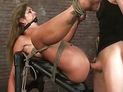 Horny girl seotud