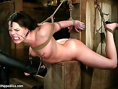 In this old school archive shoot Dana DeArmond proves that she can take anything Sandra Romain can dish out.  This shoot is highly mighty from start to finish.  Lot's of real submission, firm punishment, harsh humiliation, hardcore romp and assfuck ass hook play. This one was too supreme to keep buried!