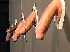 Cockpride fags