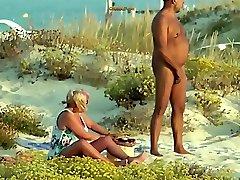 Beach Inspector 31