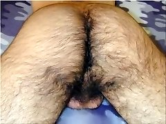 Creampie Collection