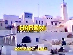 Harem - Part 1