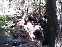 Forest voyeur wanking #6