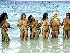 הפנטזיה החוף