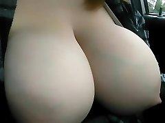 udders swollen with milk unloading