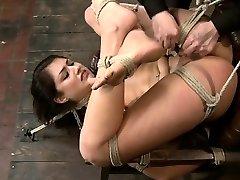 Amateur xxx bizarre penetration