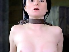 Veruca James is a classic beauty that looks way too refined to do the filthy things she does. But this is no lady. Veruca is a complete sexual freak. She is one of the best deep throaters in the industry today, and can take a face fucking like no other. Today she gets throat boarded until her eyes cross. The Sybian has her screaming orgasms through the cock crammed into her hole.