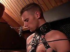 hämmastav pornstar armuke sheila horny blond, väike tissid xxx video