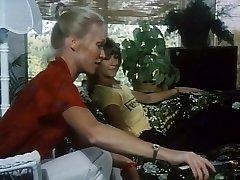 लालची (1980)