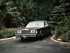 Miami Vürtsi 2 (1988)