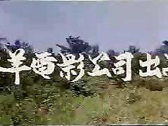 vintage taiwan