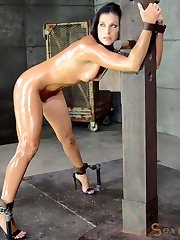 India Summer is here to serve as a repository for cock. Were taking turns on this top shelf...