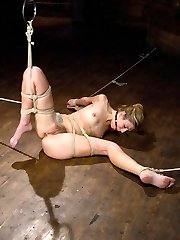 pWelcome Chastity Lynn gorgeous and young to hogtied. pbr pbScene 1bbr We start with Chastity...