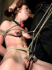 Riley Shy gets wet from hard punishment and rough sex while bound by James Deen. Unfortunately,...