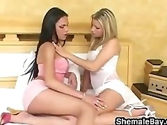 Shemale In A 3some