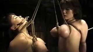 Asian double titty bondage