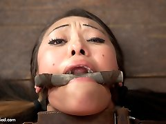 Babe Jayden Lee has an amazing ass. We have no choice but to arch this disgraceful ravage hoe over a barrel and give it to her stiff. She is made to pull on her own nip forceps as Claire works her over with the magic wand. She uncontrollably yanks head to tail with sheer pleasure and is pushed in as many ways as possible. 2nd, she is tied to the barrel with her hot juicy butt in the air and ankles up to the pulley. Her knees are roped down to floor anchors so she can't close her legs like a fine bi-atch and her labia is challenged to take in a gigantic metal ball pussy hook. Final position we experiment with two things. The arms in an inescapable straight jacket / switch sides cage tie and the body contorted in spoon. Don't let the lying on her side look deceive you. Having this hot labia laying on a string couch frame getting banged in the twat is NOT comfortable. She is tormented with tickling and penetrated repeatedly with the rod on a stick and vibrator. No matter what she does, she can't break away the torment or the delight. Jayden is fucked.