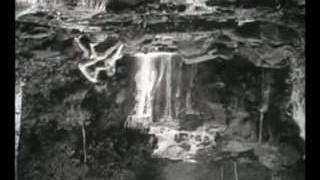 חתיכות ביער (1962)