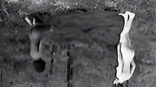 חשוף נודיסטים בובות מתעסק (1960 עתיק)