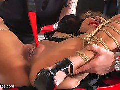 Melody Petite is a perky slut in a box - Part 1Mistress Minerva has a present for Steve Holmes!...