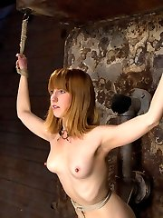 Welcome Mallory Malone to Hogtied. This 511 amazonian blond goddess has huge nipples, long sexy...
