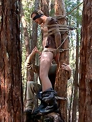 Deep in the woods, Christian Wilde stands up in the trees, bound and blindfolded as Sebastian...