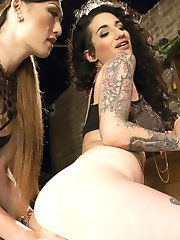 Arabelle and Venus are both trying to get home for the holidays but they are snowed in in the...