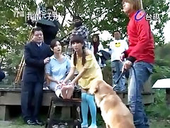 Taiwanese star feet tickle dog lick