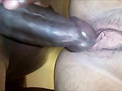 shemal dog Interracial Pussy fucking