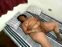 Mature abelia and cindy dollar Strips & Plays