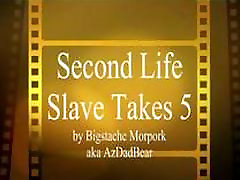 Second LIfe Slave takes 5