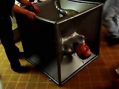 My First Vac-Cube Demo