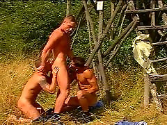 Gay wild life sex