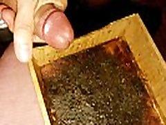 Mealworms grandfather fucked grand daughter urethra huge cumshot