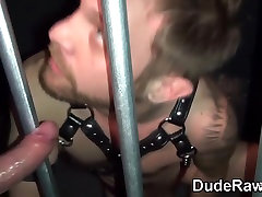 Leather bear and cub suck