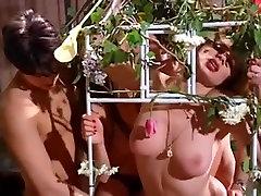 letnik francoščina orgie 1