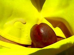 dickhead kasvab ja võrsed close up