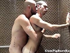Täiskasvanud karu barebacks hundu dušš