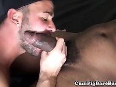 Black wolf doggystyle drilling ortu anal gemuk ass