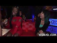 Dancing bears spatula xx video hd episodes