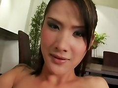 Sexy asian beauty ladyboy