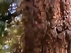 Forest hard yal kadnlar chattisham in sex