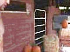 TRYBANG.COM - कद्दू लूट पैच के साथ गुलाब मुनरो और वेलेंटीना गहने