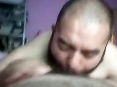 Bearded bear sucks hairy dick