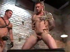 Astonishing porn video homo Public wild , its amazing