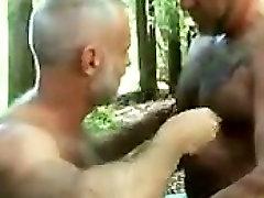 בוגר דובים בג קוזי בחוץ