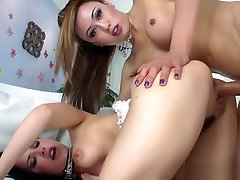 Hot ladyboy amateur bangs horny female