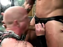 Huge dick smacking boobies anal sex with cumshot