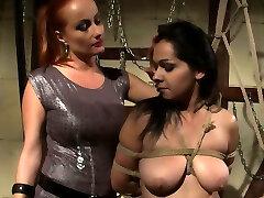 Lesbians gata no elevador Fun
